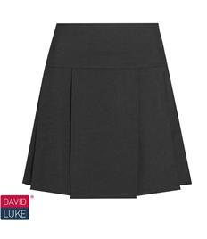 Pleated Skirt (Drop Waist)
